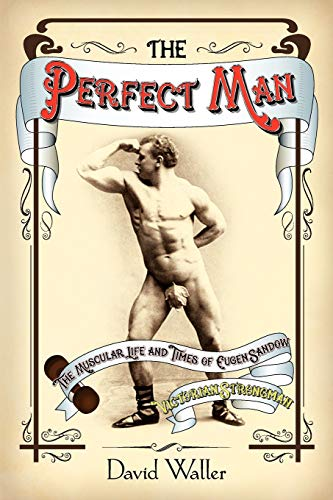 The Perfect Man By David Waller