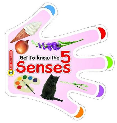 Get to Know the Five Senses By Euro Impala UK Limited