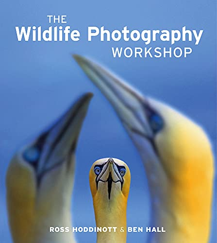 The Wildlife Photography Workshop by Ross Hoddinott