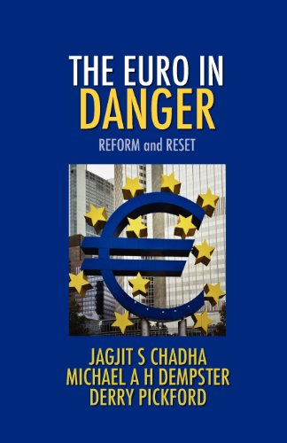 The Euro In Danger by Jagjit S Chadha