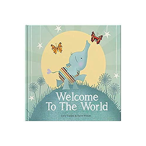Welcome to the World : keepsake gift book for a new baby (From You to Me Publishing) By Illustrated by Lucy Tapper