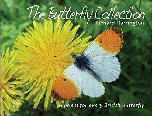 The Butterfly Collection By Richard Harrington