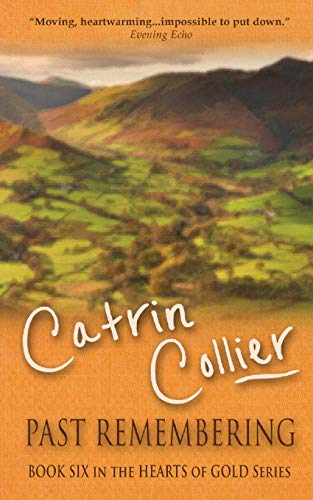 Past Remembering By Catrin Collier