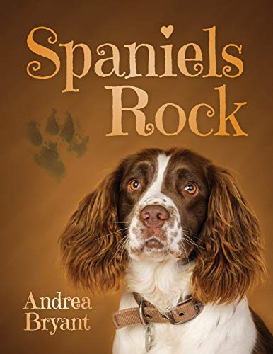 Spaniels Rock By Andrea Bryant