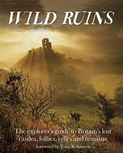 Wild Ruins: The Explorer's Guide to Britain Lost Castles, Follies, Relics and Remains By Dave Hamilton