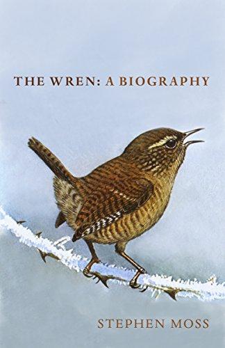 The Wren: A Biography By Stephen Moss