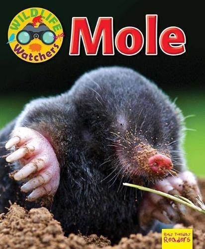 Wildlife Watchers: Mole By Ruth Owen