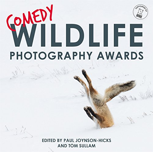 Comedy Wildlife Photography Awards: THE PERFECT CHRISTMAS STOCKING FILLER by Paul Joynson-Hicks