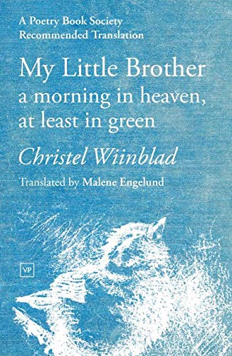 My Little Brother By Christel Wiinblad