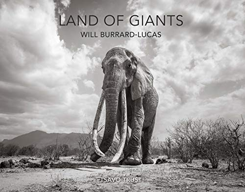 Land of Giants By Will Burrard-Lucas