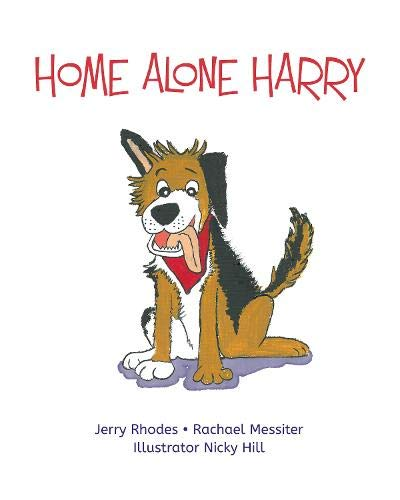 Home Alone Harry By Jerry Rhodes