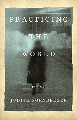 Practicing the World By Judith Sornberger