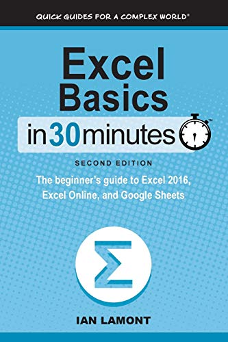 Excel Basics In 30 Minutes (2nd Edition) By Ian Lamont