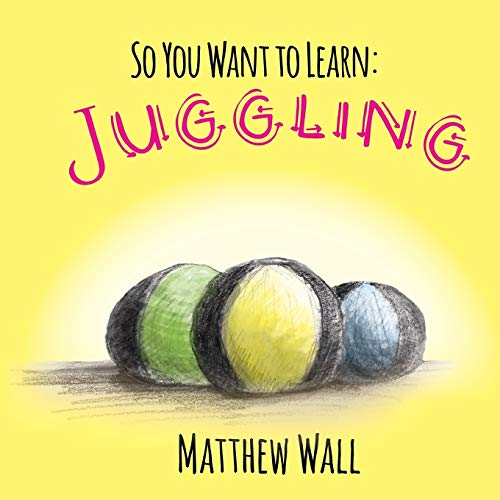 So You Want to Learn By Matthew Wall