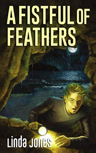 A Fistful Of Feathers By Linda Jones