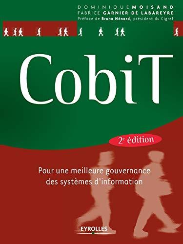 Cobit By Dominique Moisand