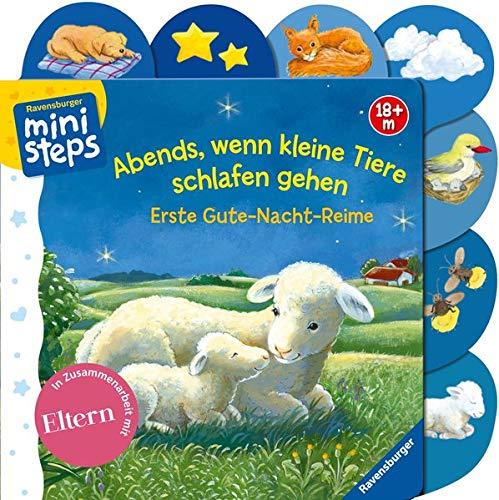 Abends, wenn kleine Tiere schlafen gehen: Ab 18 Monaten By Sabine Cuno