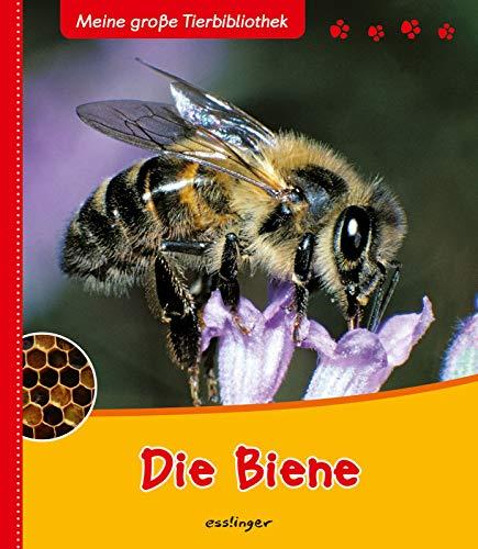 Meine große Tierbibliothek: Die Biene By Paul Starosta