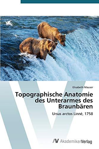 Topographische Anatomie Des Unterarmes Des Braunbaren By Mauser Elisabeth
