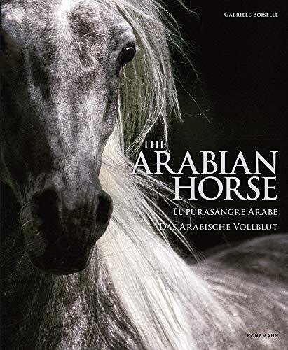 The Arabian Horse By Gabriele Boiselle