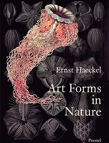 Art Forms in Nature: Prints of Ernst Haeckel By Olaf Breidbach