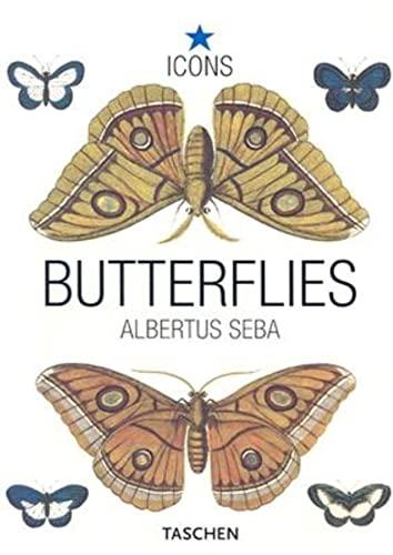 Butterflies By Albertus Seba