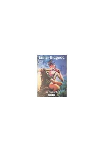 Bidgood Postcardbook (Postcardbooks) by James Bidgood Paperback Book The Fast