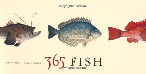 365 Fish by Tamas Kotai