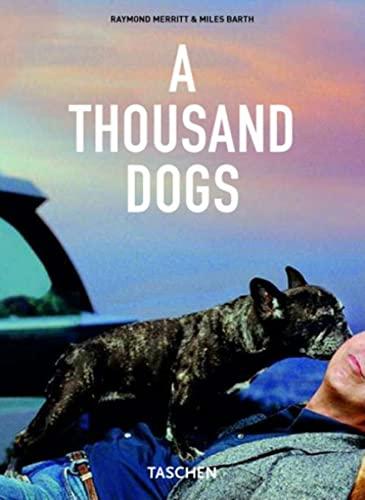 A Thousand Dogs by Raymond Merritt