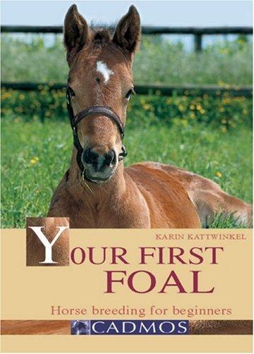 Your First Foal By Karin Kattwinkel