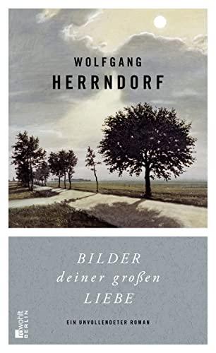 Bilder deiner großen Liebe: Ein unvollendeter Roman von Wolfgang Herrndorf