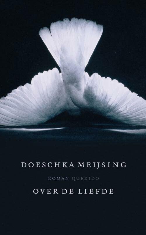 Over de liefde By Doeschka Meijsing