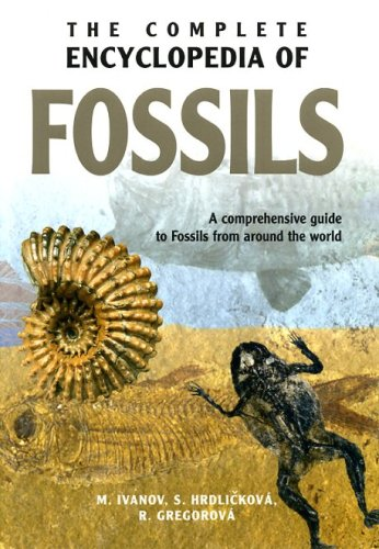 Complete Encyclopedia of Fossils by Book Sales, Inc.