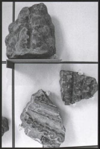 Aglaia Konrad - Schaubuch: Skulptur (looking At Sculpture) By Aglaia Konrad