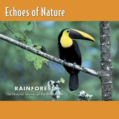 Echoes of Nature - Rainforest