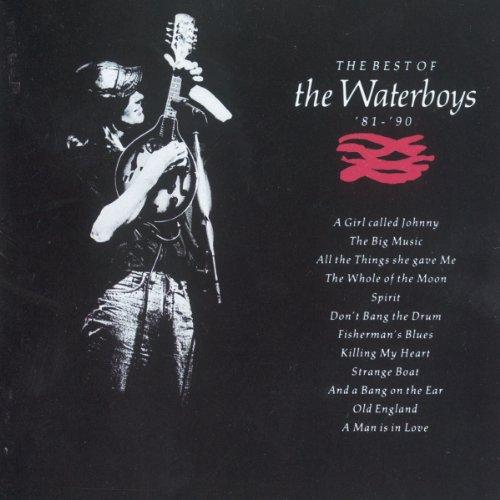 Waterboys: Best of '81 - '90 By Steve Wickham