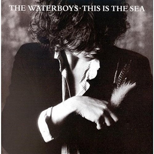 This Is the Sea By The Waterboys