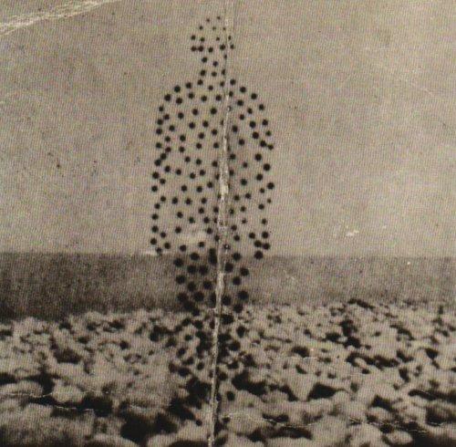Beme Seed - Beme Seed