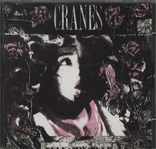 Cranes, the - Self Non Self