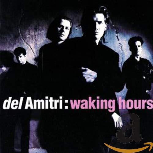 Del Amitri - Waking Hours