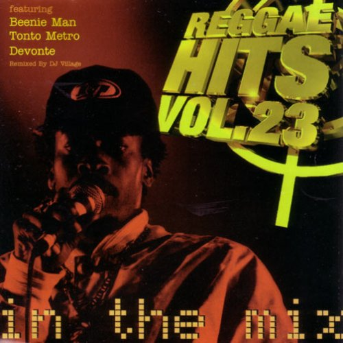 Various Artists - Reggae Hits Volume 23 In The Mix