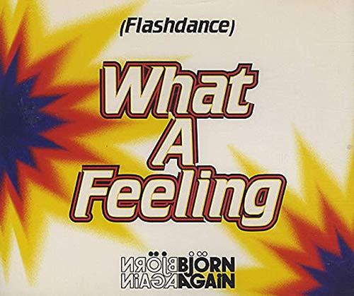 Bjorn Again - Flashdance What A Feeling