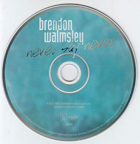 Brendon Walmsley - Never Say Never By Brendon Walmsley