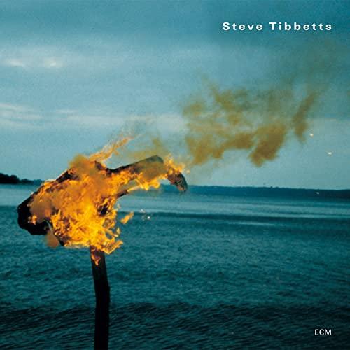 Steve Tibbetts - A Man About a Horse By Steve Tibbetts