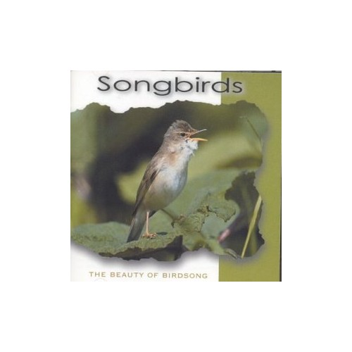 Songbirds: The Beauty of Birdsong By Birdsong