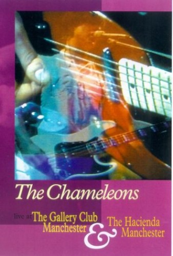 The-Chameleons-Live-At-The-Gallery-Club-2002-DVD-CD-9UVG-FREE-Shipping