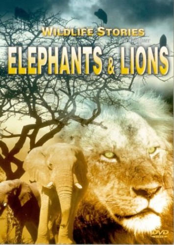 The Whole Story - Whole Story, The: Elephants And Lions
