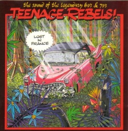 Various - Teenage Rebels-Lost in France