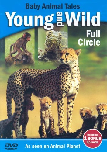 Young-and-Wild-Full-Circle-DVD-CD-W0VG-FREE-Shipping