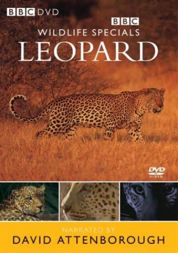 BBC Wildlife Specials: Leopard